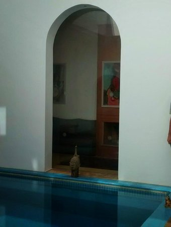 Riad Zyo : foto da piscina