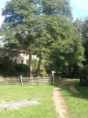 El Moli de Can Aulet: Grounds leading up to cottages