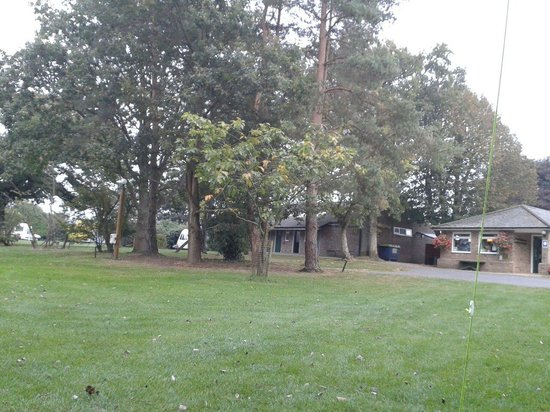 Whitemead Caravan Park: Looking out from our tent