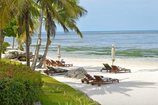Kizimkazi, تنزانيا: la plage à marée basse