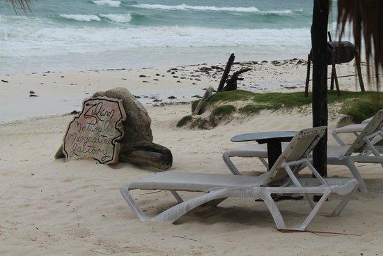 Zulum Beach Club + Cabanas: hermosavista para relajar