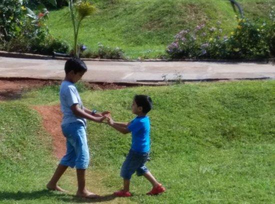 ريد إيرث كابيني: The greenary for the kids