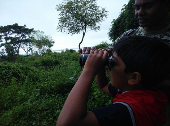 ريد إيرث كابيني: Nature Walk - Bird Watching