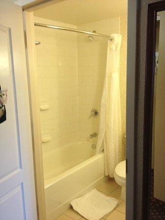 Hilton Garden Inn Grand Forks : Shower-Tub