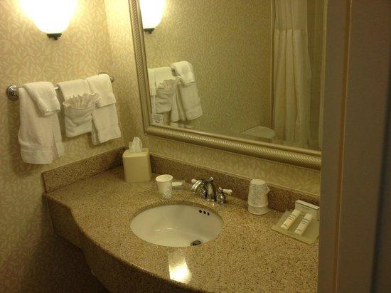 hilton garden inn grand forks und bathroom counter - Hilton Garden Inn Grand Forks