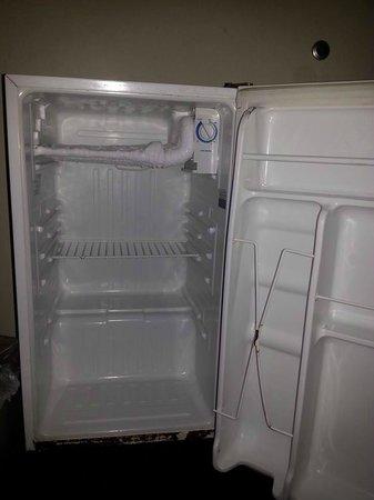 Days Inn Turbeville : Dirty old fridge