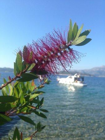 Three island cruise : Third island -we had 2 hours here