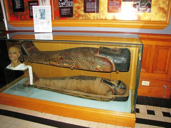Mummy Exhibit At The Museum Of Natural Science