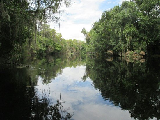 Photo of Park Shingle Creek Regional Park at 4266 W Vine St, Kissimmee, FL 34741, United States