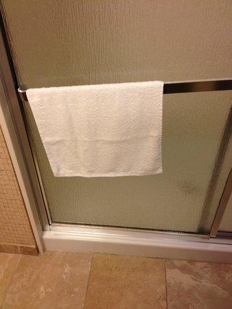 Hampton Inn & Suites Savannah Airport: Towel bar on shower door