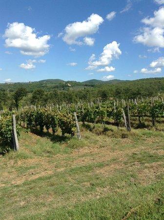 Prestige Rent : Tuscany