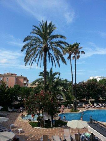 Grupotel Alcudia Suite: Ausbilck vom Pool