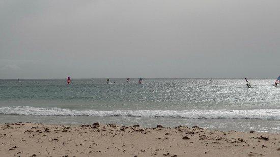 Tarifa, Španielsko: Windurfers