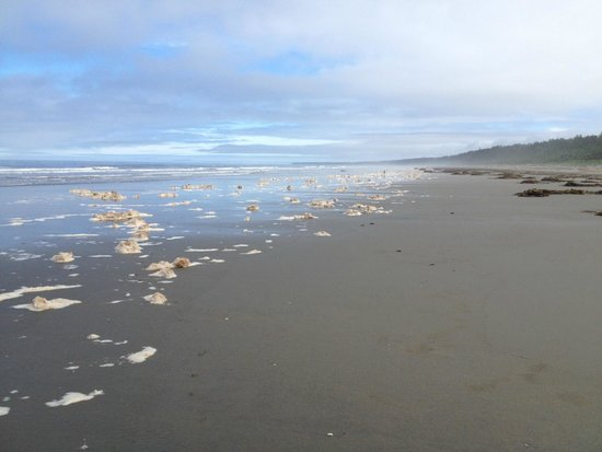 All The Beach You Can Eat: You can see Alaska from here!