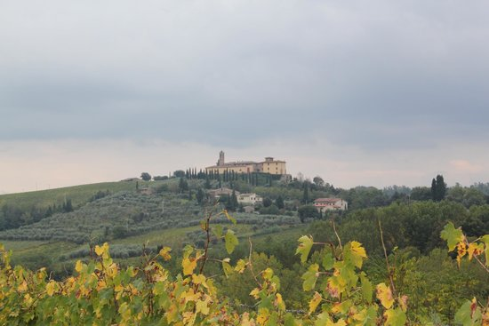 Agriturismo Poggiacolle: view of surrounds