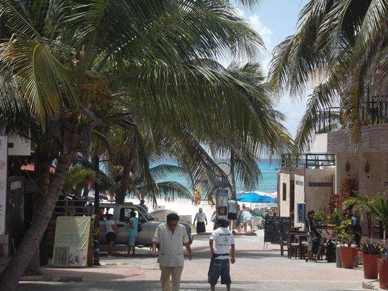 Hostel Quinta Playa: desde el hostel a la playa