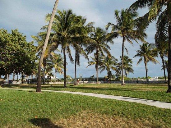 Ocean Blue Hostel: Al frente del Hostel