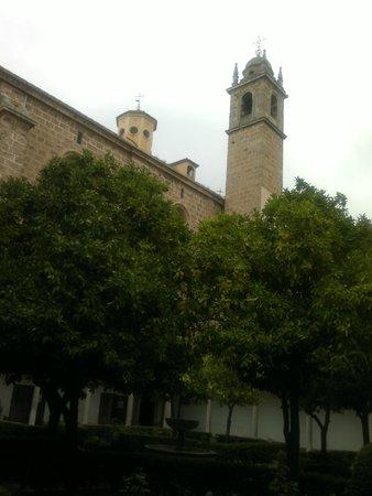 Monasterio Cartuja: Naranjos y Torre