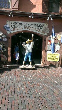 ‪The Shell Warehouse‬