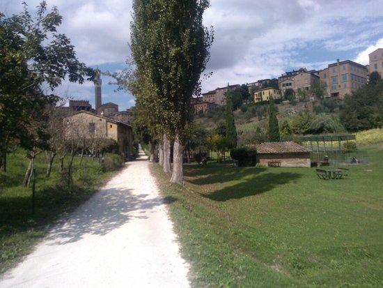 """All'Orto de' Pecci: l'incredibile """"valle verde"""" in centro a Siena"""