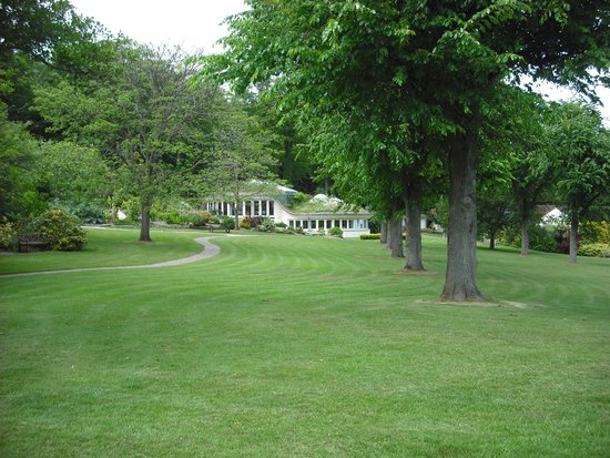 The Pines Garden: the Pines caylx
