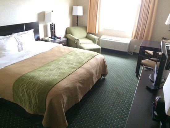 Comfort Inn & Suites North: King room on 2nd floor