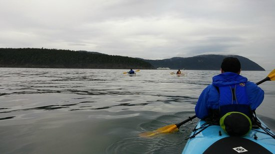Anacortes Kayak Tours: On the water with AKT.