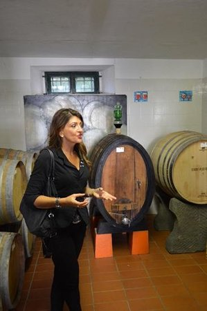 Wine Tours with Italy and Wine: hilary giving us the down and dirty about vino