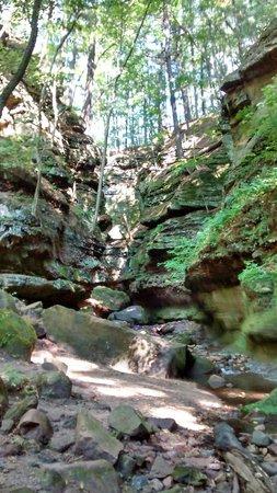 Parfrey's Glen : Along the Trail