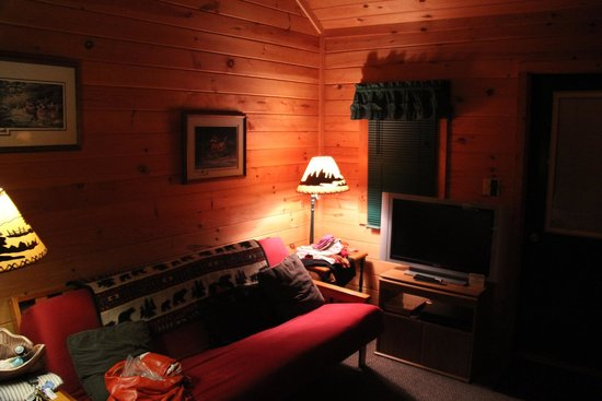Snowy Mountain Inn: Cabin living room