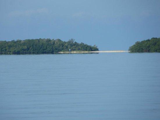 Chokoloskee Island Charters: Calm