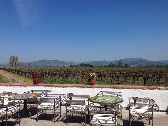 Ristorante Vino Bello: Maravillosa la vista y la comida