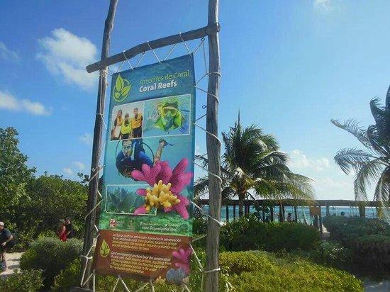 Punta Sur Eco Beach Park : Llegando a Punta Sur Cozumel