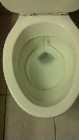 ماجنوسون هوتل واشنطن: Toilet ring...not cool