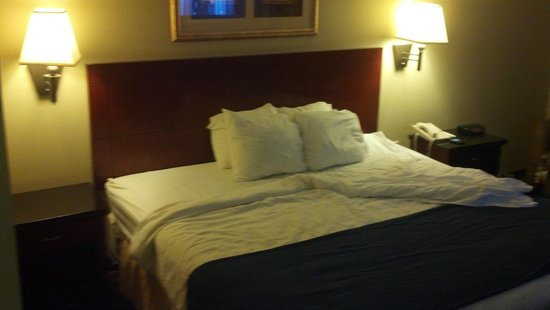 Magnuson Hotel Washington: Shot of bed