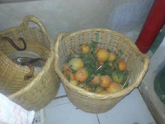 Riad Chi-Chi: fresh oranges at The Riyad