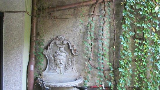 Villa Petra : Во дворе виллы