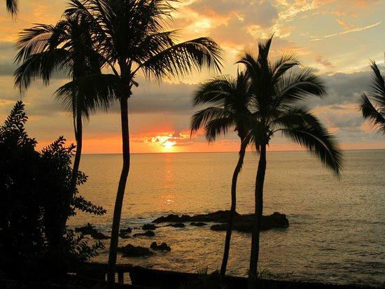 Playa Conchas Chinas Hotel: view 3