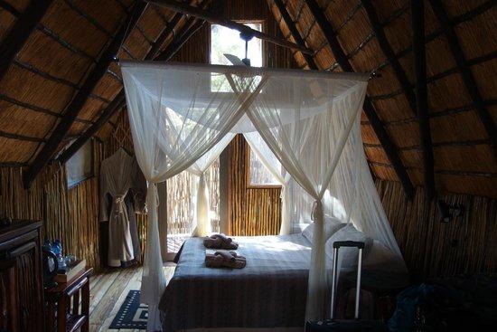 Pezulu Tree House Game Lodge: la mia camera