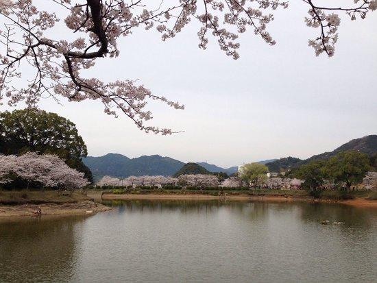 Amagi Park