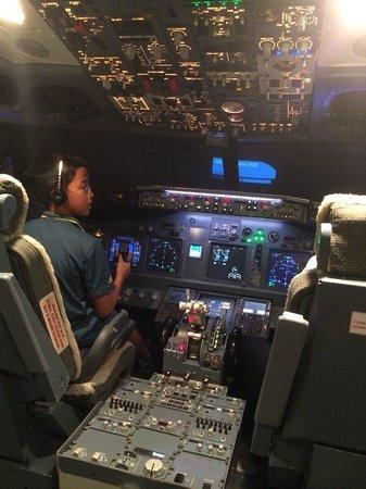 Flight Experience Flight Simulator: On a simulated flight to SFO