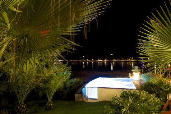 Les Hortensias du Lac : Pool at night