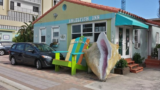 Angelfish Inn: Office