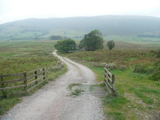 Near Howe Cottages: The meandering drive