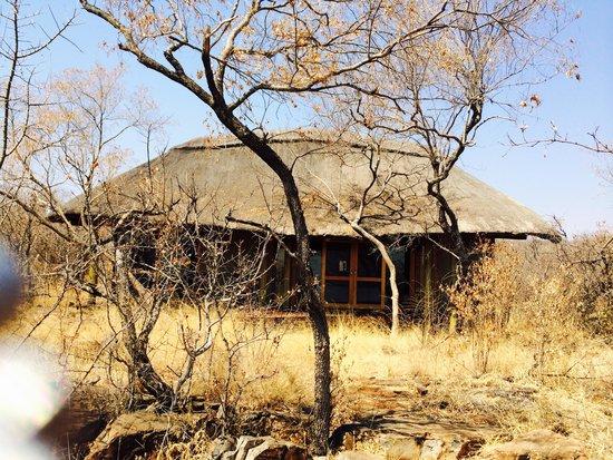 Buffalo Ridge Lodge : Separate, private bungalow