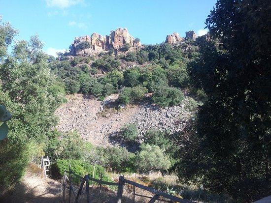 Centro di Educazione Ambientale Serra Guarneri: la serra di guarneri