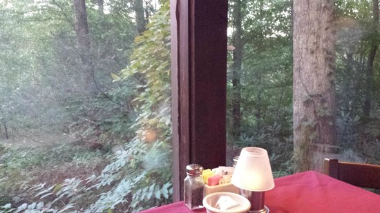 Greenbrier Restaurant : View from table