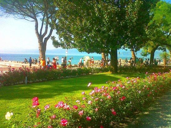Hotel Corte Valier: Lungo lago