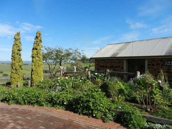 Coriole Winery: great location