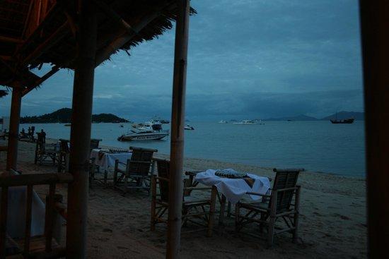 Shades Beach Restaurant & Wine Bar: beach view
